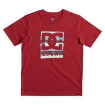 DC Boy's T-shirt Rusted Panel SS Boy