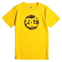 DC T-shirt m.c. Cruiser Island SS BY