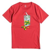 DC T-shirt m.c. Shred Mint SS BY
