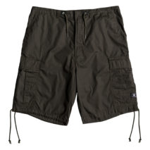 DC Shorts Trueper Short 22