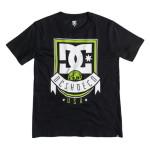 DC T-shirt m.c. Royal Banner SS BY