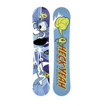 DC Snowboards Ply Mini