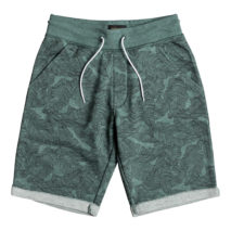 Quiksilver Boy's Shorts felpato Masento Youth