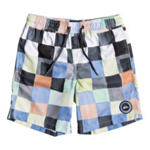 Quiksilver Boy's Volley Resin Check Volley Youth 15
