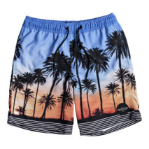 Quiksilver Boy's Volley Sunset VIbes Volley Yth 15