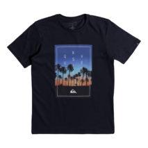 Quiksilver Boy's T-shirt SS Classic Tee Salina Stars Yth