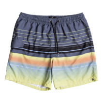 Quiksilver Volley Swell Vision Volley 17