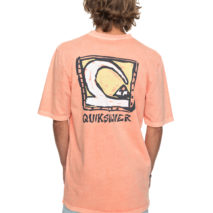 Quiksilver T-shirt SS Durable Dens Way