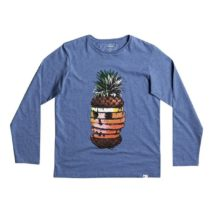 Quiksilver Boy's LS Classic Tee Yth Hot Pineapple