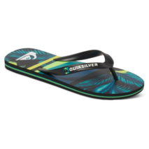 Quiksilver Sandals Molokai Slash Print
