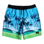 Quiksilver Boy's Volley Waves VL Youth 15