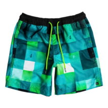 Quiksilver Boy's Volley Check Mark VL Youth 15
