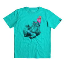 Quiksilver Boy's T-shirt SS Classic Tee Youth Local Mostly