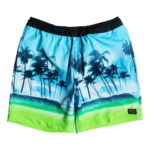 Quiksilver Volley Waves Volley 17