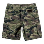 Quiksilver Shorts Everyday Deluxe
