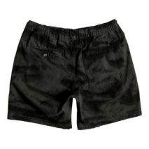 Quiksilver Shorts Battered Tie Dye