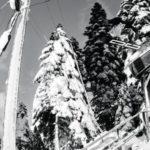 Scegli lo Snowboard DC più adatto a te