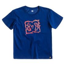 DC T-Shirt m.c. Quantum SS BY