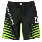 DC Boardshorts Carnivore AS