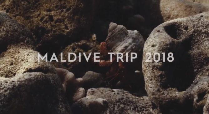 Alle Maldive con Quiksilver e Blackwave