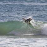 Michele Scoppa e la passione per il surf