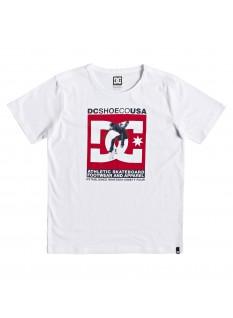 DC Boy's T-shirt Visual Tre SS
