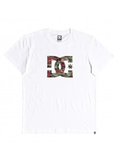 DC T-shirt Star SS 2