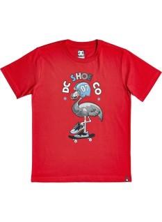 DC Boy's T-shirt Mingoback SS Boy