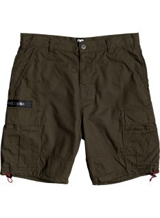 DC Shorts Banded Cargo 20