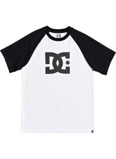 DC T-shirt Star SS Raglan 2