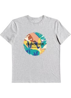 Quiksilver T-shirt Summers End SS