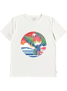 Quiksilver T-shirt Above The Sun SS