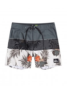 Quiksilver Boardshort Everyday Division 17