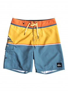 Quiksilver Boy's Boardshort Everyday Division Youth 16